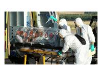 Product Image: AthenaGTX Infectious Disease Transport Kit - iDT (500-0001-03)